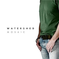 Picture of Watershed Mosaic