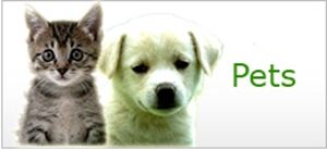 Picture for category Pets